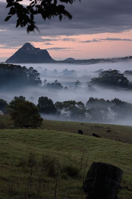 Glass House Mountains, Brisbane, Australia. | Perhaps should go again just to watch the sunrise
