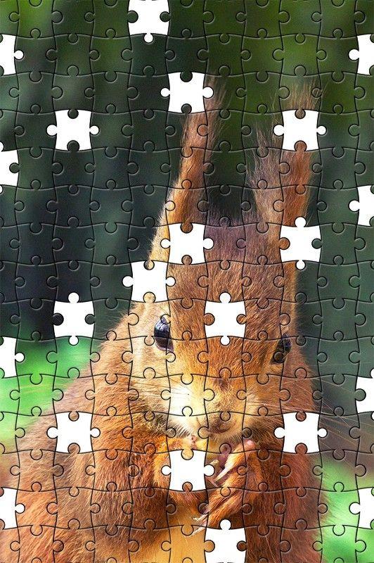 Free Jigsaw Puzzle Online - Squirrel