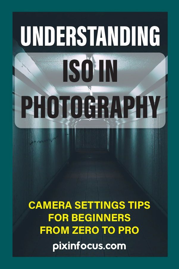 What does iso stand for in photography