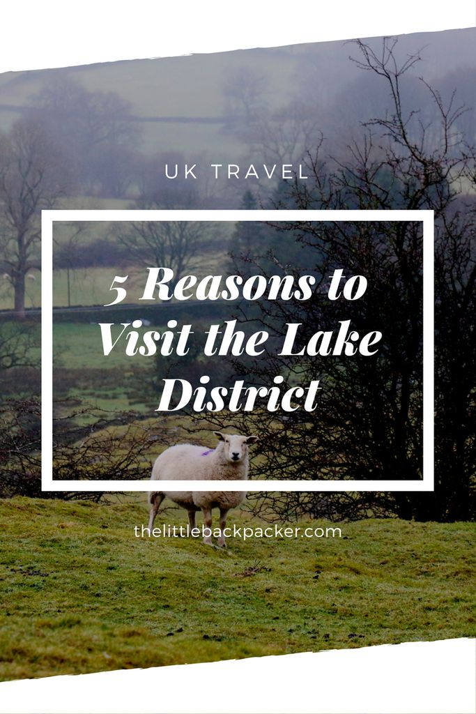 Five Reasons To Visit The Lake District - The Little Backpacker
