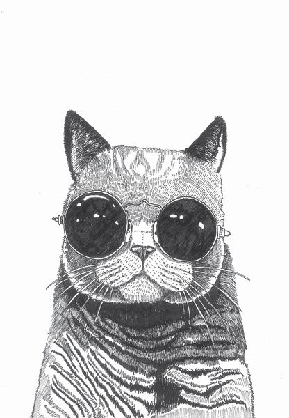 cool cat art print - Cool Pictures To Print
