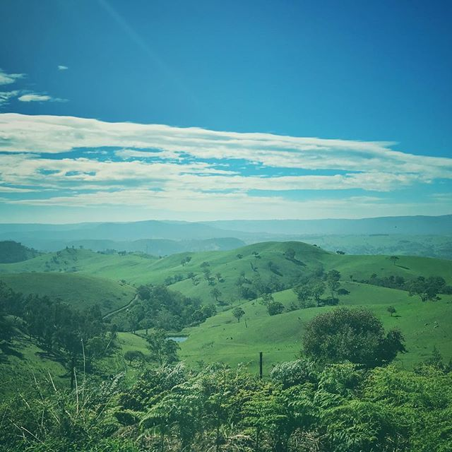 Top of the evening to you! No this isnt Ireland (as much as I would much rather be there right now) but still scenic- Good Forest NSW @lithgow_tourism @visitnsw #GoodForest #green #stpatricksday #landscape #nsw #newsouthwales #travel #roadtrip #hills #clovarcreative #adventure #trees #australia