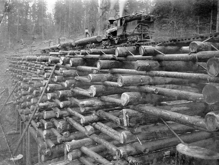 Boscaioli ingegnosi. Dovevano superare un canalone per trasportare il legname e avevano a disposizione solamente gli alberi tagliati in loco. Avendone in abbondanza non hanno fatto economia ed ecco un mostruoso, ma tutto sommato solido e affascinante nella sua semplice complessità, traliccio di tronchi su cui posare i binari per far passare il treno. 1910 Columbia, Nehalem Valley.