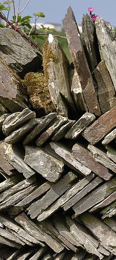 CORNISH SLATE WALL | Cornwall     ✫ღ⊰n