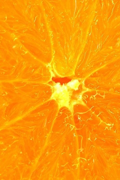 macro d'une orange