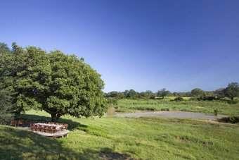 Exeter River Lodge | Sabi Sand Game | Kruger Park area | Southern Africa |