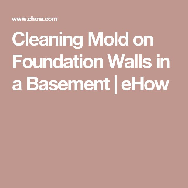 17+ Ideas About Cleaning Mold On Pinterest | Mildew Remover