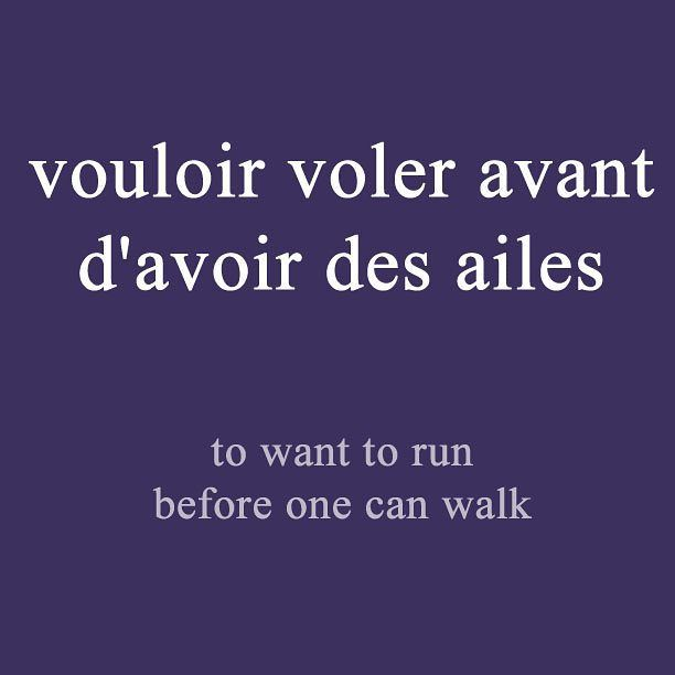 French expression of the day: vouloir voler avant d'avoir des ailes - to want to run before one can walk