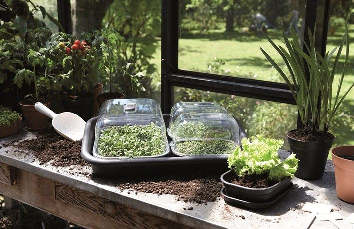 green basics growhouse, Elho