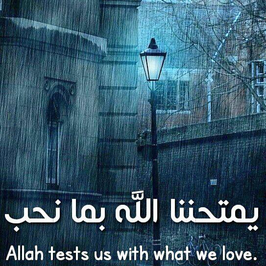 يمتحننا الله بما نحب. - Allah tests us with what we love.