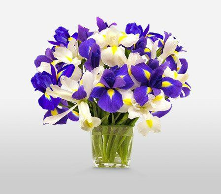 Ocean View Flower | Country Flowers Delivery - http://flowersnhoney.com/ocean-view-flower-country-flowers-delivery/