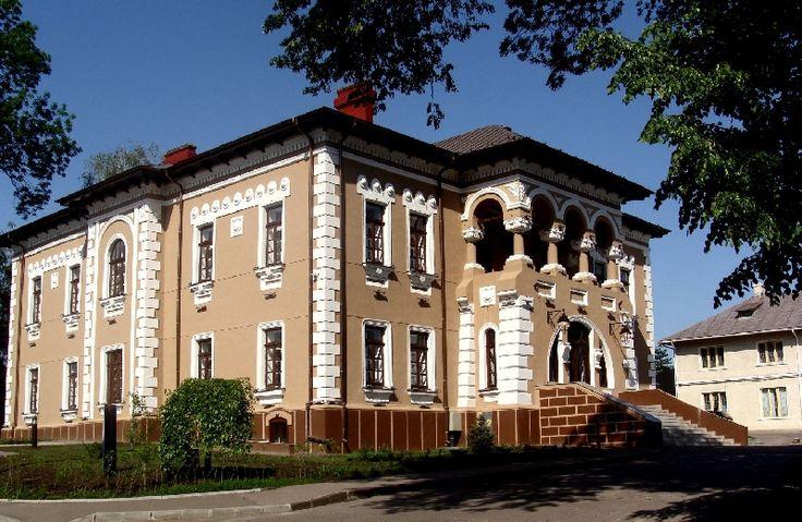Muzeul de Arta Ion Irimescu