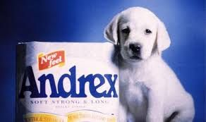 Image result for andrex puppy advert