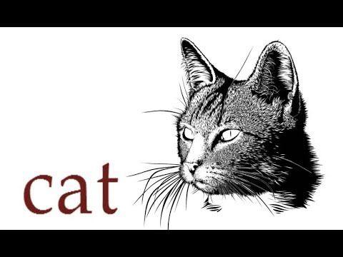 Кіт, як намалювати кота, як намалювати лице кота, малюємо красивого кота