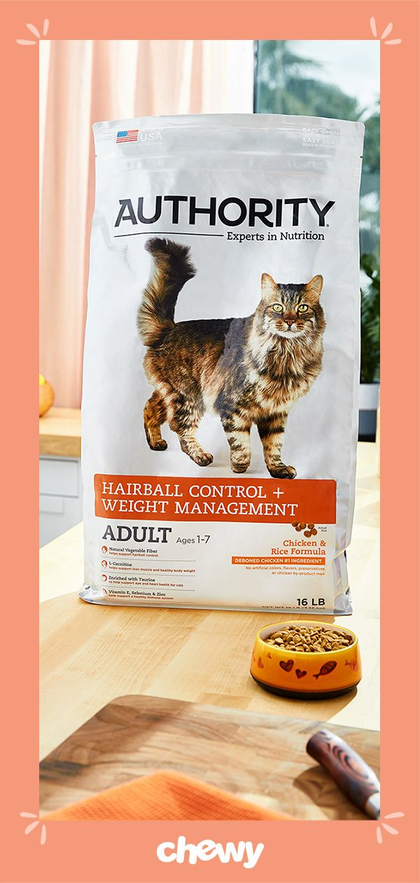 Help Your Cat Feel His Best With This Authority Hairball Control