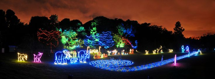 Zoo Lights are a combination of your favorite zoo animals, Christmas lights, music, and fun activities that results in seeing the zoo in a whole new light! Here are 7 must-see zoos this holiday season.