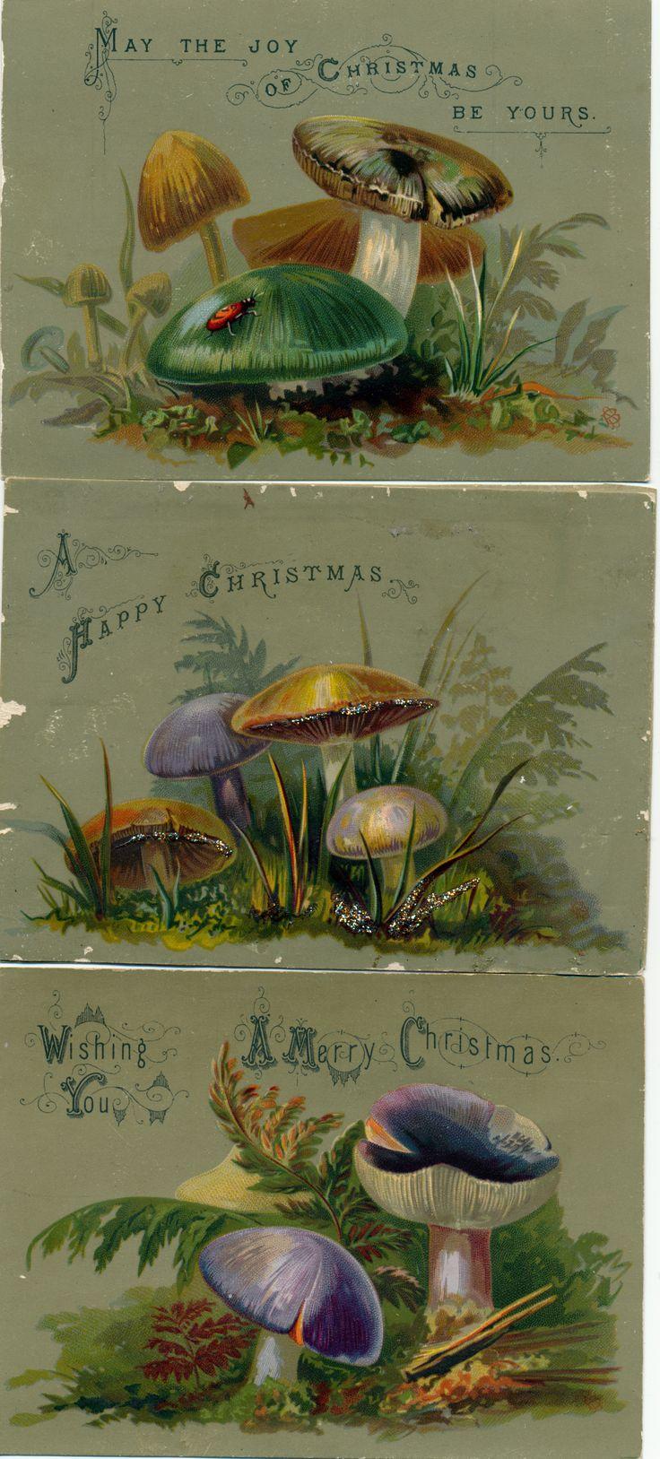 Victorian mushroom Christmas cards. Because mushrooms are so Christmas.
