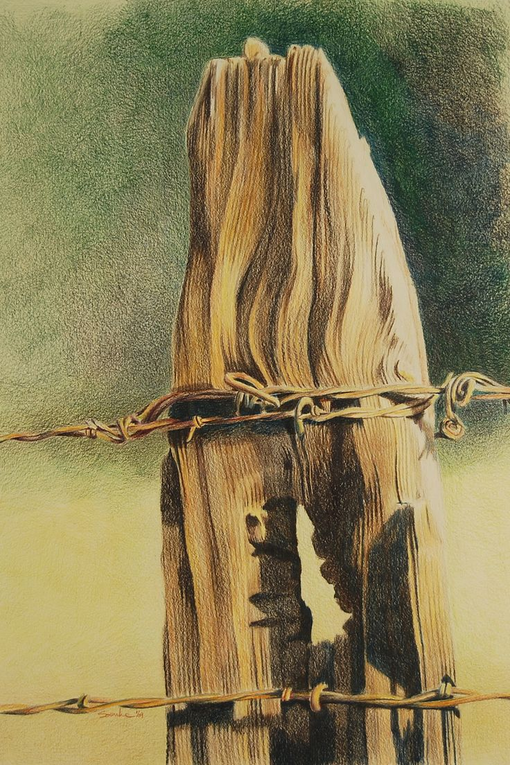 Fence Post,#2, color pencil on paper