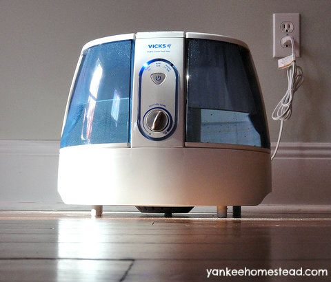 can a humidifier make you sick