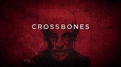 Crossbones Infobox.jpg