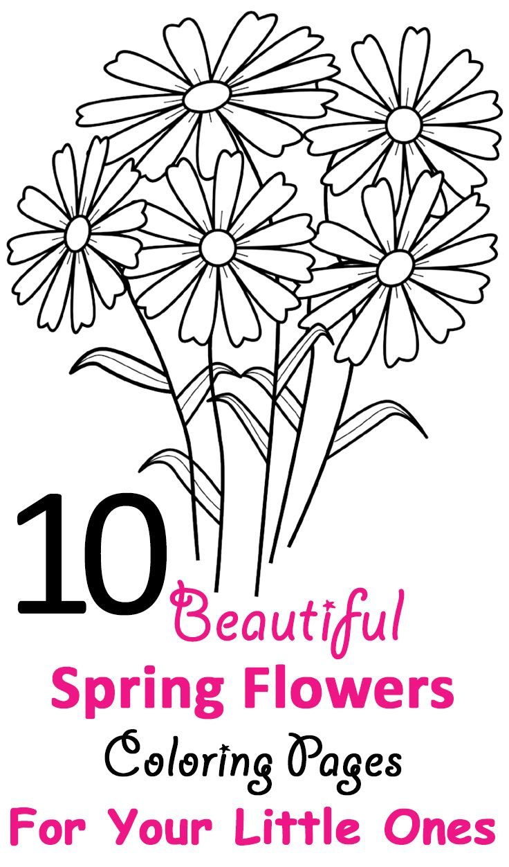 50 best coloring spring images on pinterest coloring sheets