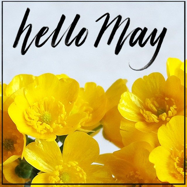 Hello May! Come by and download your free, printable May 2017 Planner!