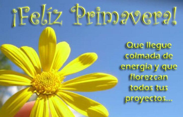#FelizDomingo  #Feliz Privavera que llegue colmada de  frases proZesa