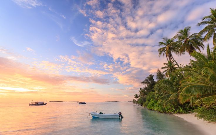 Online hotel bookings all over the world. Book cheap, budget and luxury hotels at best price from leading hotel booking site. Free cancellation on many hotels. #tourism #travel #island #beach #tours