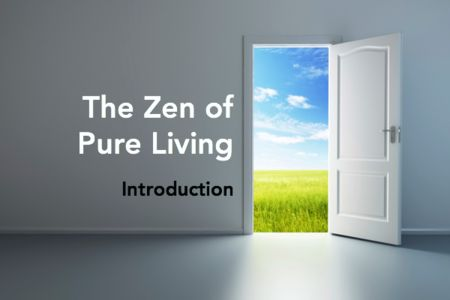 The Zen of Pure Living | Simple steps, helpful resources and some humor kicked in. #healthy #chemicalfree #nontoxic #home