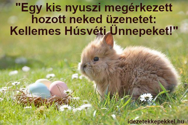 husvéti idézetek képekkel nyuszis húsvéti idézet | Animals