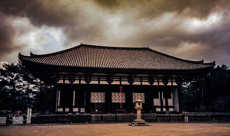 Popular on 500px : The east golden hall Kofukuji temple in Nara 興福寺東金堂 by NaokiTakei