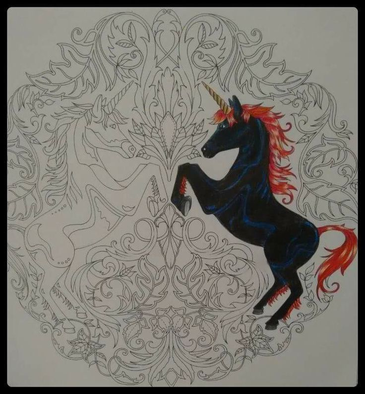 Unicorns Enchanted Forest Unicornios Floresta Encantada Johanna Basford Adult ColoringColoring BooksColouringJohanna