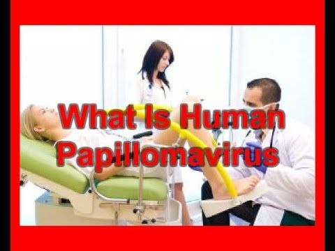 What Is Human Papillomavirus | HPV Symptoms Treatments Vaccine - WATCH VIDEO HERE -> http://bestcancer.solutions/what-is-human-papillomavirus-hpv-symptoms-treatments-vaccine    *** cervical cancer symptoms ***   What is Human Papillomavirus | HPV Symptoms Treatments Vaccine Cdc – Human Papillomavirus (Hpv) And Cancer Out of all of the sexually transmitted infections, human papillomavirus (HPV) is the most prevalent. According to the United States' Centers...