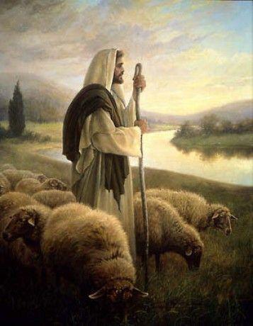 """""""Eu sou o caminho, a verdade e a vida. Ninguém vai ao Pai se não por mim."""" -Jesus Cristo."""