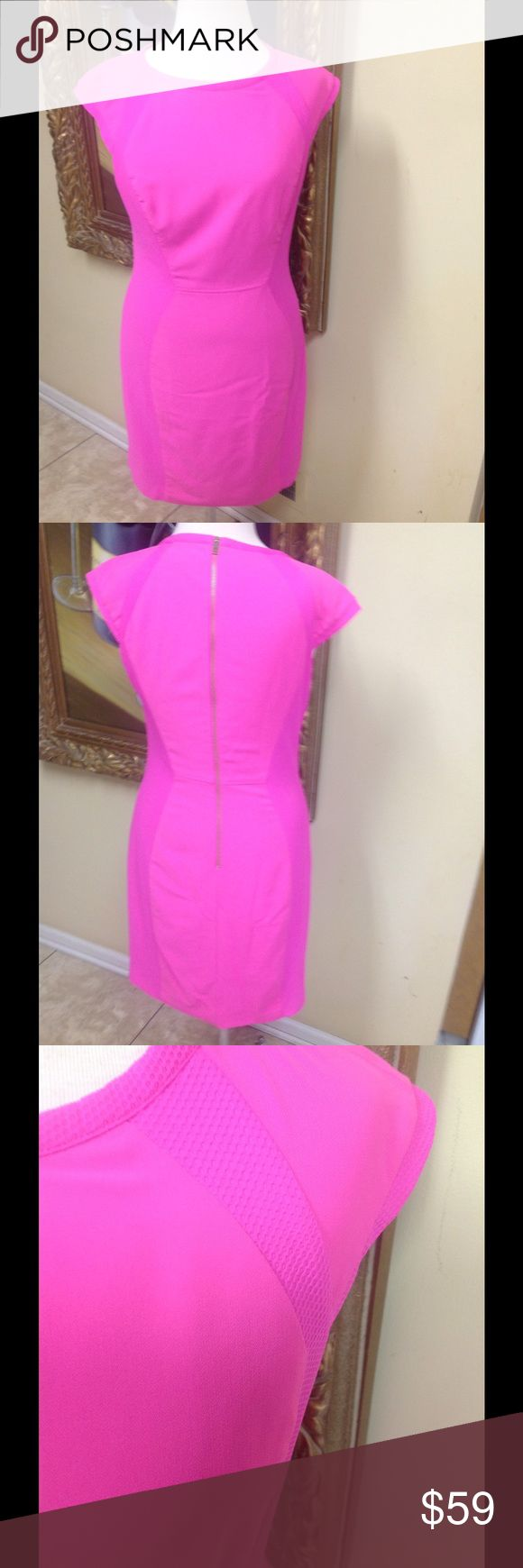 Ted Baker Pink Dress Size 4 Stunning Ted Baker Dress size 4. Gorgeous bright pink color, zipper back, beautiful fabric with silk lining, minor wear with a tiny spot not noticeable, classic style, low price. Ted Baker London Dresses Midi