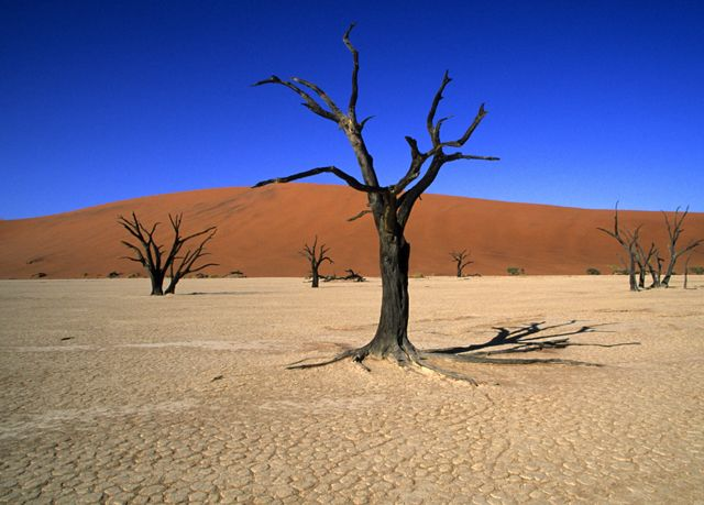 Incredible Namibia self-drive holiday, Hotels and tented camps in five Namibian destinations - save 26% - http://www.moredeal.co.uk/shop/holidays/incredible-namibia-self-drive-holiday-hotels-and-tented-camps-in-five-namibian-destinations-save-26/