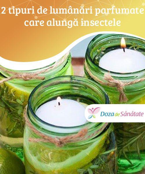 2 tipuri de #lumânări parfumate care alungă #insectele  Lumânările parfumate făcute acasă sunt ideale pentru a ține insectele la distanță, dar și pentru a da o notă personală oricărei încăperi. Citește în #continuare pentru a afla cum se confecționează!