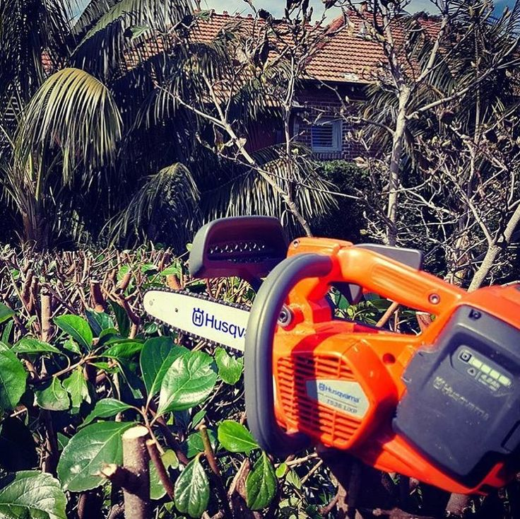 Lightweight powerful and easy to use the T536Li XP battery-powered top handle chainsaw was made with the professional user in mind. But don't take our word for it ask @footprintgardens  #Battery #Husqvarna #Chainsaw #Garden #HusqvarnaPro #HusqvarnaReady #Landscaper #Arborist #batterychainsaw #Mondaymotivation