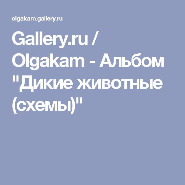 """Gallery.ru / Olgakam - Альбом """"Дикие животные (схемы)"""""""