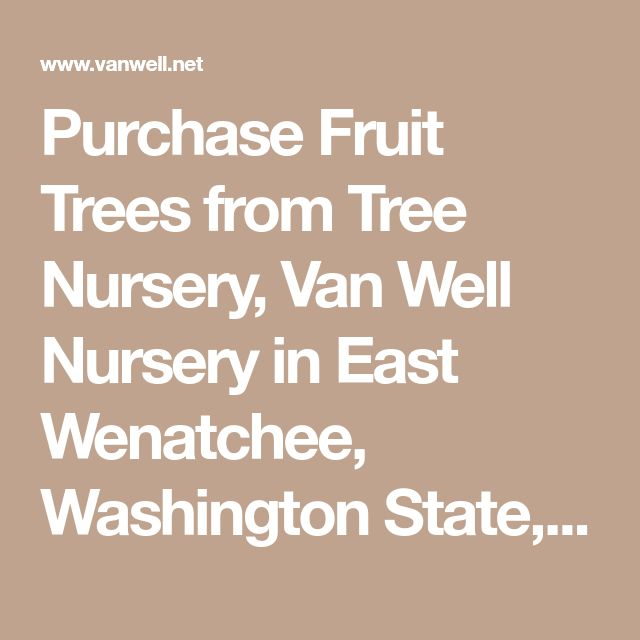 Purchase Fruit Trees From Tree Nursery Van Well In East Wenatchee Washington State United States Garden 2017 18 Notes Pinterest