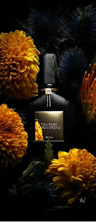 Tom Ford Black Orchid §, the perfect fragrance for the gala!