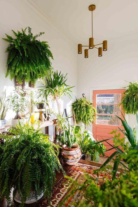 Urban jungle hal met Perzisch tapijt en koraalkleurige deur. Tropische entree: check!