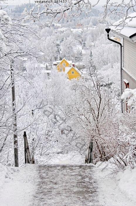 Keltaiset talot - Pispala Pispalanharju Tampere maisema porras portaikko portaat kuura talvi lumi talo keltainen rakennus puutalo