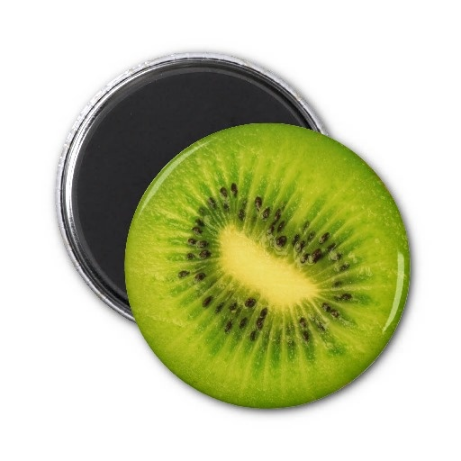 Fruit Magnet Series -Kiwi-