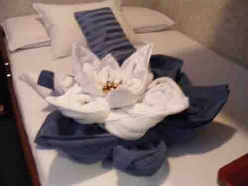 Towel origami on our cabin bed each day , Photo of Galapagos Islands - IgoUgo