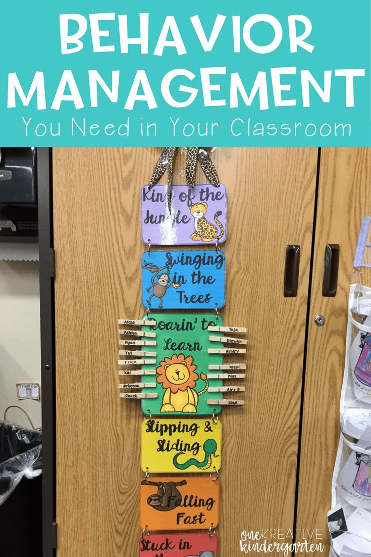 Behavior Management Systems You Need in Your Classroom