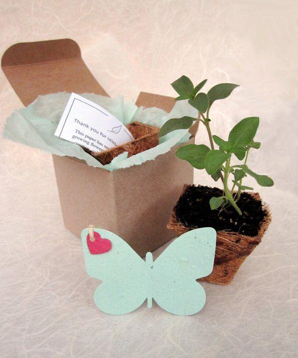 Piantami! eco bomboniere realizzate utilizzando vasi in fibra di cocco, terra e tanti semi.