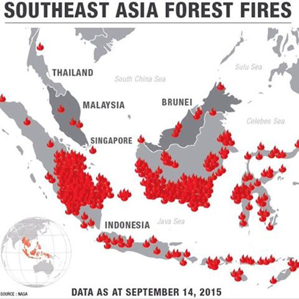Planet Funder - Borneo and Sumatra Fire Emergency