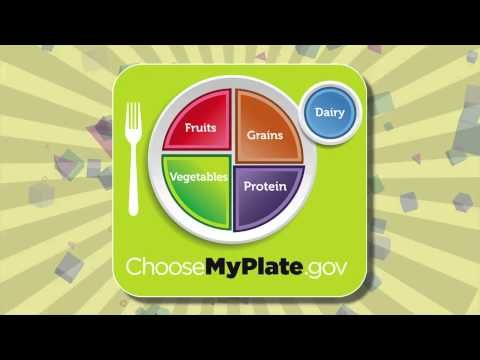 FIT KIDS 66 My Plate food groups