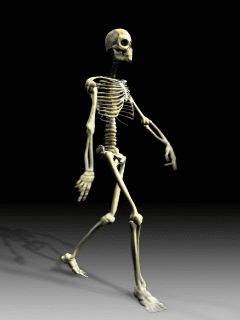 Latest Download free Skeleton Mobile Wallpaper contributed by francesca2010, Skeleton Mobile Wallpaper is uploaded in Animation Wallpapers category. 5